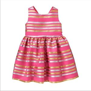 Gymboree Special Occasions Dress